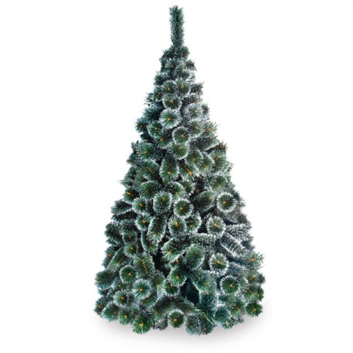 Жилкова елха бял връх 120 см