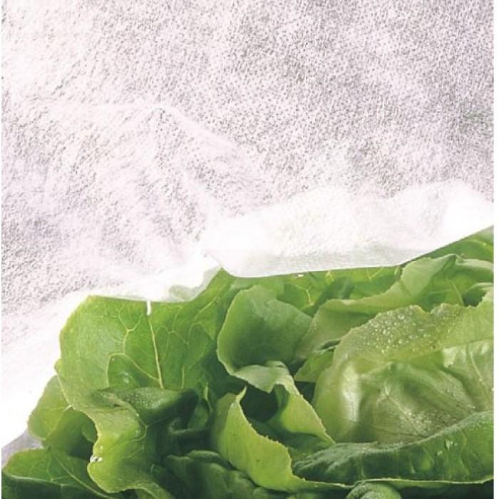 Тъкан срещу слана - лист 1.6 х 9.4 м