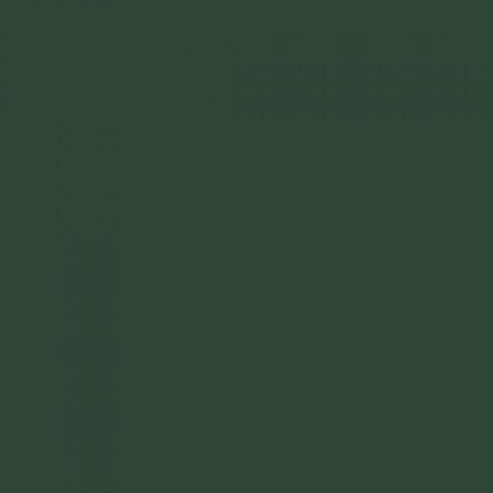 Емайллак за поцинковани повърхности Tessarol зелен 0,75л
