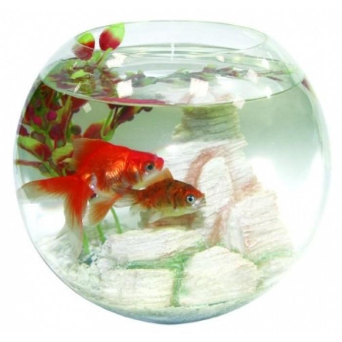 Аквариум за риби Колба 10х25см / 5л