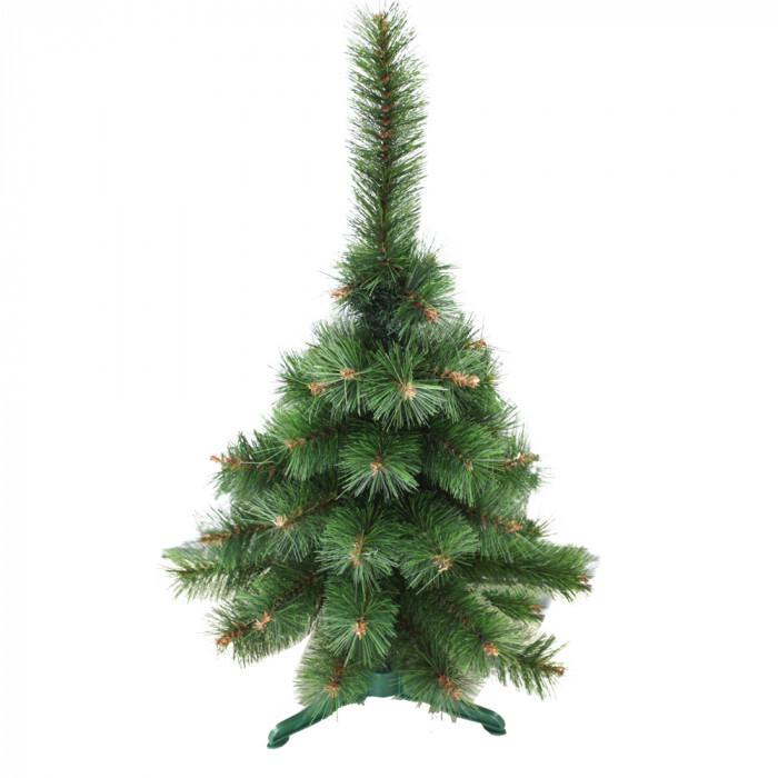 Жилкова елха тъмна 80 см